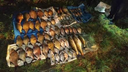 Гомельчанин перегородил 7-ю сетями водоём и поймал 50 кг рыбы, в основном леща