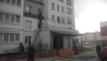 На пожаре в Гомеле спасены четыре человека: женщина и трое детей