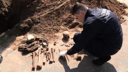 В Светлогорске рабочие нашли человеческие останки. Рядом – советские патроны и немецкий котелок