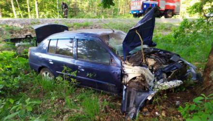 В Лельчицком районе женщина уснула за рулём и врезалась в дерево. Пострадал мужчина-пассажир
