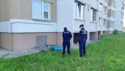 В Гомельском районе мальчик выпал с 9-го этажа и разбился насмерть