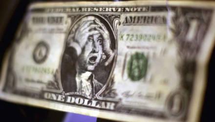 """""""Нашёл возле мусорных баков"""": гомельчанин пытался обменять в банке фальшивые доллары"""
