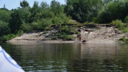 """""""А нам всё равно!"""" Почему гомельчане купаются в запрещённых местах?"""