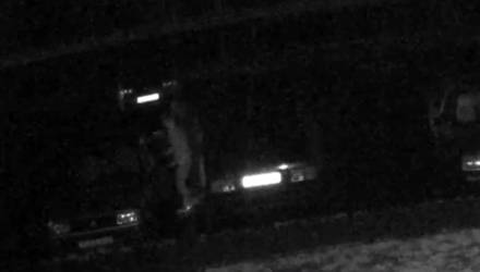 В Гомеле трое угонщиков авто стали звёздами Интернета, попав на видео. Но их пока не нашли