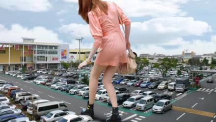 ГАИ проверит, умеют ли гомельчане парковаться возле торговых центров